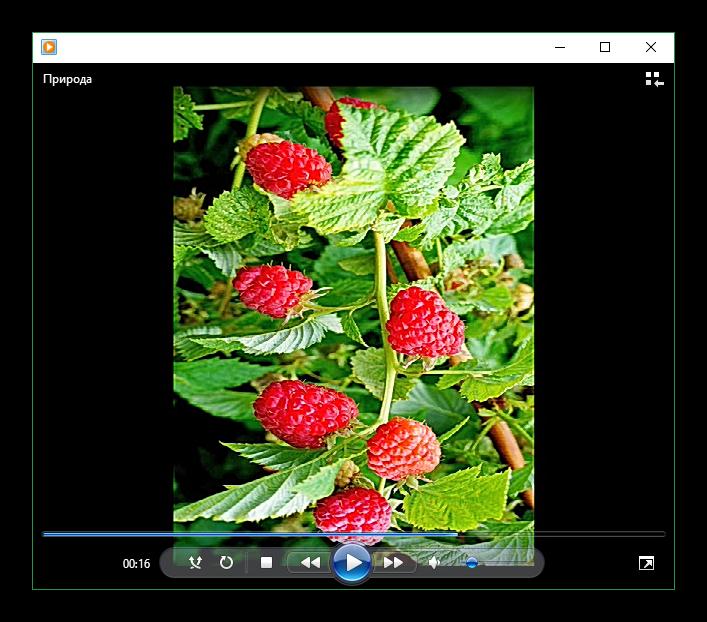 Результат поворота фотографии в Windows Movie Maker